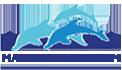 Máy kích cá Trung Quốc – Máy kích cá điện tử